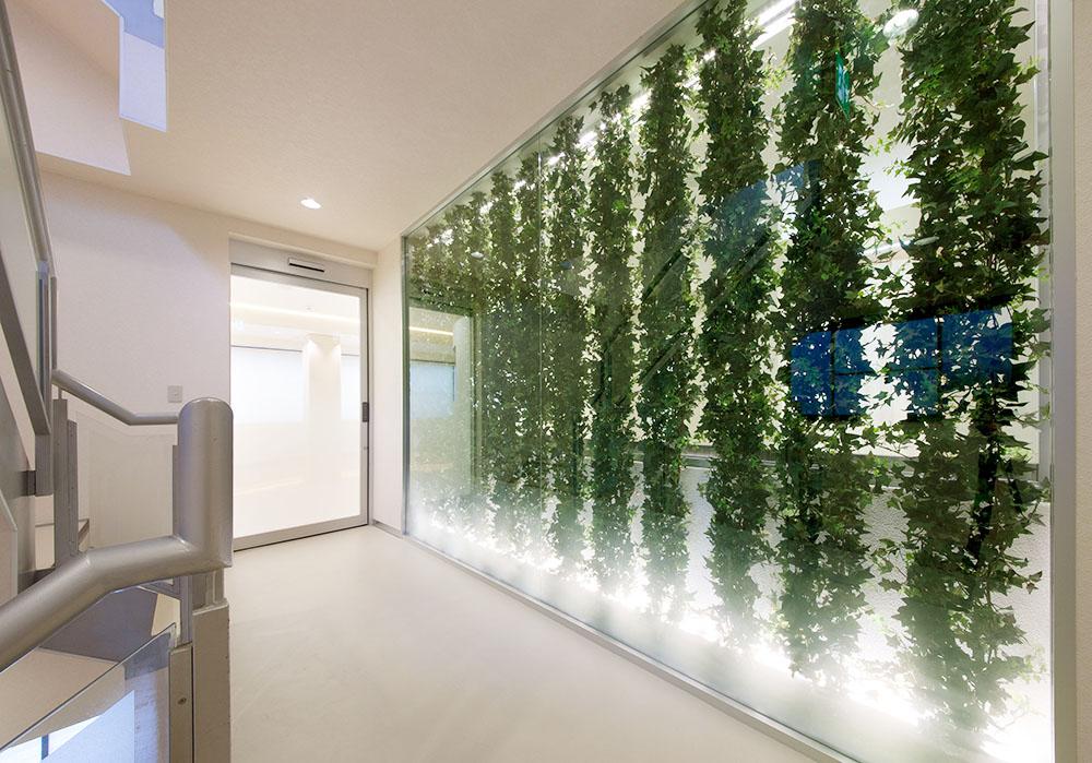 エントランス 外からの視界を遮るグリーンのデコレーション